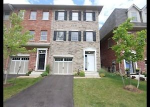 338 Louisa St-Beautiful End Unit Townhouse In Victoria Commons
