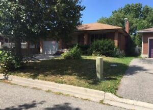 Student House 5 Rooms in a 9 Rooms-Close To Conestoga College