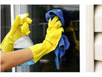 Job, Employee, Staff, Worker, Cleaner, Work