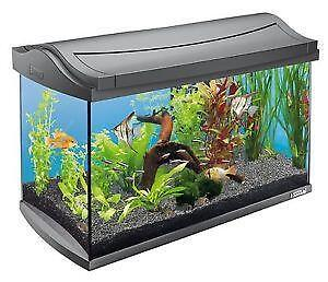 fish tanks fishbowls aquariums ebay. Black Bedroom Furniture Sets. Home Design Ideas
