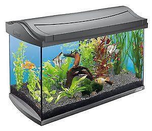 Fish Tanks Fishbowls Aquariums Ebay
