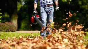 Fall clean up and leaf removal services Kingston Kingston Area image 3