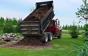 Wood Chips (Dump Truck Load)