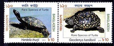 BANGLADESH MNH 2V SE TENANT, CROWNED RIVER TURTLE, BLACK POND,  TURTLES -NL4