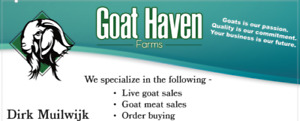 Goat Haven Farms ~ Fresh goat meat for sale
