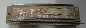 Antique Rare Hugo Rauner Chromatic Mouth Organ / Harmonica