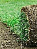 Soil, sod and other landscaping