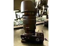 Sony G master 18-105mm F4