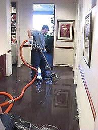 Carpet steam cleaning / wet carpet restoration