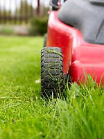 Lawn Rolling/Aeration, Ect.