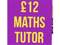 £12 Higher Maths Tutor School Maths Tutoring - current medical student