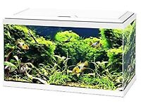 Ciao Aqua 60 LED fish tank (new and unopened) plus gravel and accessories