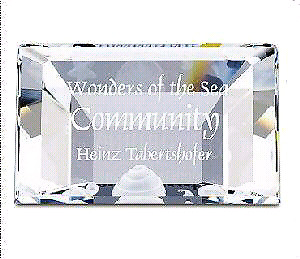 "SWAROVSKI CRYSTAL  ""COMMUNITY""  Title Plaque"