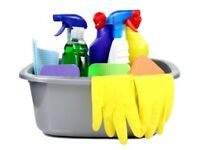 Experienced reliable cleaner