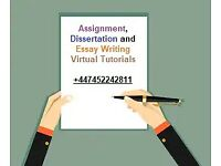 Dissertation PhD Thesis Proposal Assignment Essay Coursework Writing Proofreading Editing Help Tutor