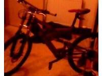 Silverfox fiery demon free rider series