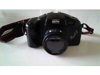 Akita Royal -1 Camera 50mm.