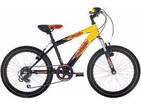 "FREE Lights with (2544) 20"" RALEIGH Boys Girls Kids Childs BIKE BICYCLE; Age: 6-9 Height: 120-135 cm"