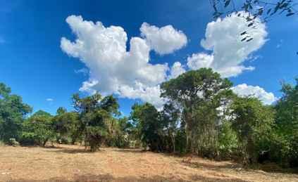 PRE-FORECLOSURE FLORIDA TAX LIEN CERTIFICATE FOR  LAND 1.14 AC COCOA, FL BREVARD