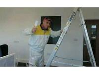 Professional Painter in/outside the best price of the market