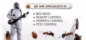 Pest Control London Barking Ilford Newham East ham Leyton Beckton Redbridge Essex Mice from £70