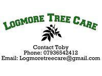 Logmore Tree Care. Tree surgery, hedge cutting, Arborist, Tree removal