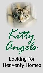 Kitty Angels, Inc.