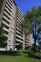 FANTASTIC FIND! Amazing 2 Bedroom Suite! CALL NOW!