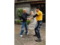 Ip Man Wing Chun Kung Fu - Martial Arts Classes with Master Michael Tse for self defence & health
