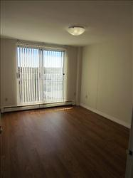 GREAT 1 Bedroom Apartment for Rent Minutes to Downtown! Kitchener / Waterloo Kitchener Area image 7