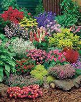 jardinier jardinière