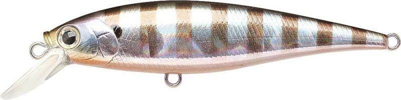 813 Blue Gill LUCKY CRAFT Pointer 78DD