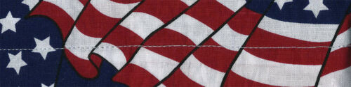 ZAN COOLDANNA (WAVY AMERICAN FLAG) DC265