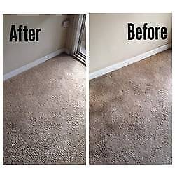 Local Pros Carpet Cleaning CALL NOW AND SAVE