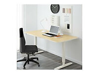 Professional Electric Height Adjustable Sit/Stand Desk