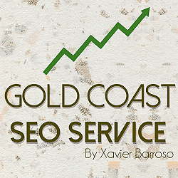 Gold Coast SEO Service Paradise Point Gold Coast North Preview