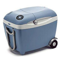 Mister Heater Buddy and Mobicool portable fridge