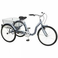 Roadmaster™ 24-in. Adult Tricycle,  Negociable