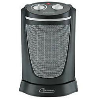 Garrison Ceramic Heater-Canadian Tire for $40