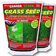 Fast Grass Seed