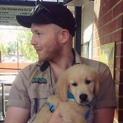 All round animal lover in South Yarra Melbourne CBD Melbourne City Preview