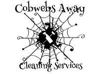 Cobwebsaway Cleaning Services 🕸