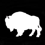 White Buffalo Visions