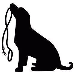 Free Dog walker Mosman Mosman Area Preview