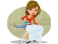 Speedy Ironing Service