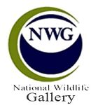 National Wildlife Gallery