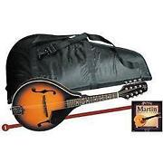 Mandolin Kit