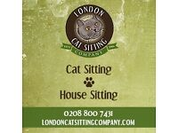 Established Cat Sitters in London and Surrey