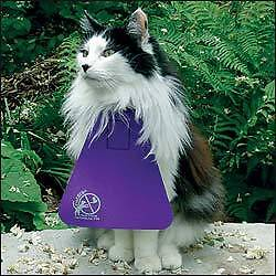 Cat Bib - stop your cat from killing birds