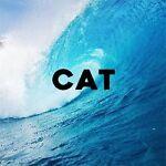 cat8500